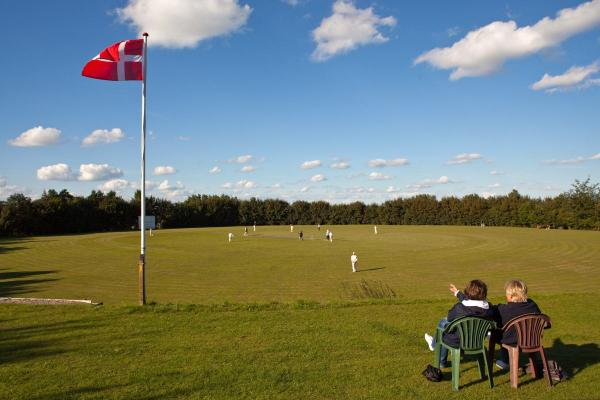 Cricket_husum